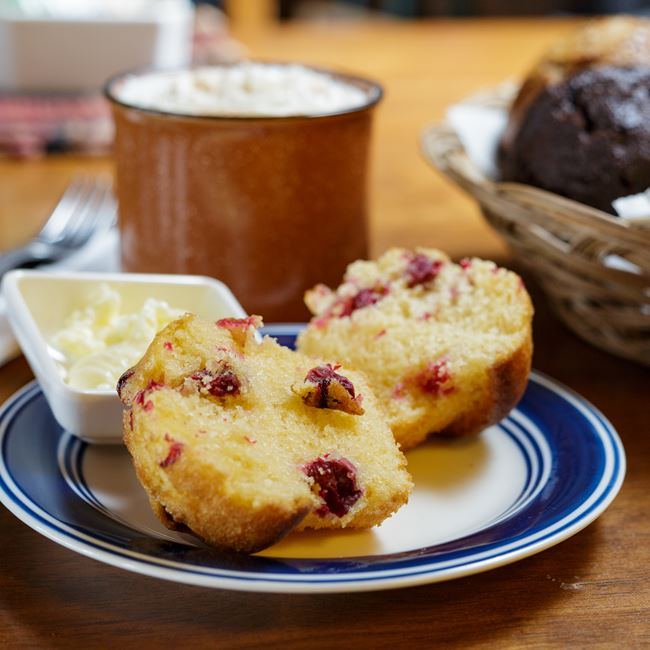 Cranberry Walnut Muffins at Great Northern Coffee Traders