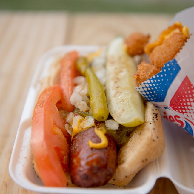 Chicago Style Hot Dog at Albatross Drive-In